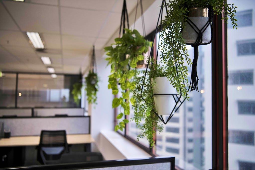 Modern Office Fitout Brisbane City